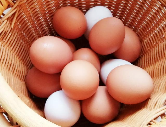 麦笑家 奥丹羽の卵